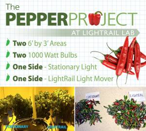 Pepper Project 5 Reasons Hand Ad