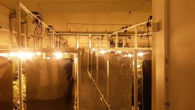 Indoor grow systems with grow light movers