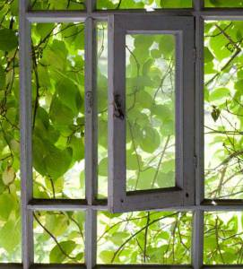 Indoor growing vs outdoor growing depends on your location and on your lighting.
