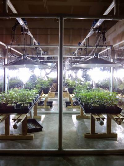 LightRail 4.20, the industrial light moevr option for any and all grow light systems