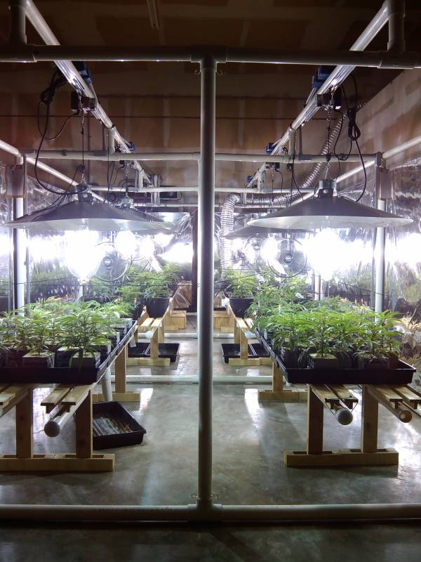 Light mover coverage is much better than stationary grow lamps