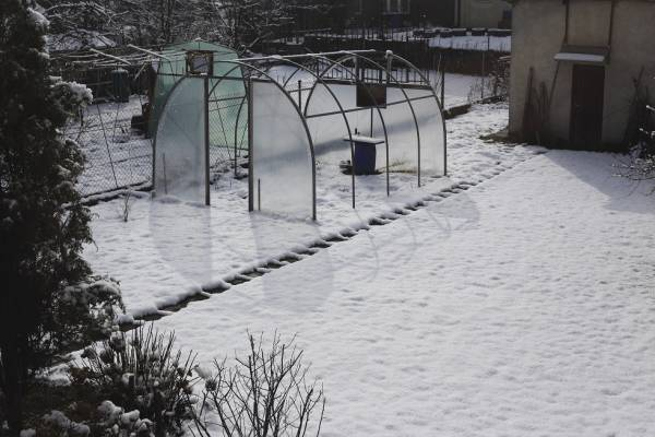destroyed greenhouse in winter