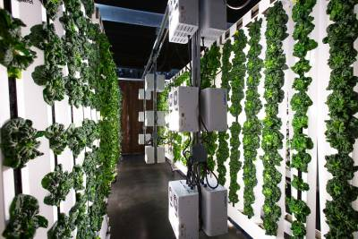 Urban agriculture is basically taking the 12,000 year old agricultural industry and improving it tenfold in what is a very short period of time.