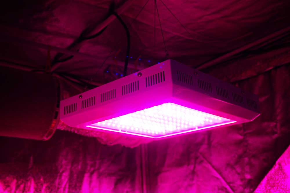 How to Diffuse LED Grow Light Intensity