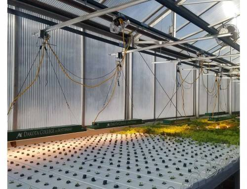 How to Hang a Long Rectangular Grow Light on a LightRail